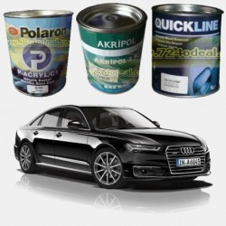 AUDI Filled Can Auto Paints