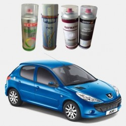 Peugeout Filled Spray Car Paints